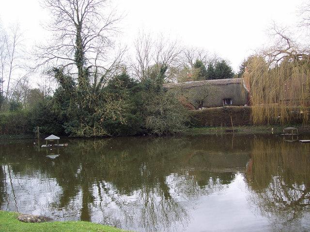 Village Pond, Crawley