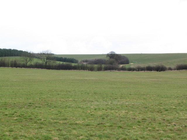 View towards Swintley Lodge