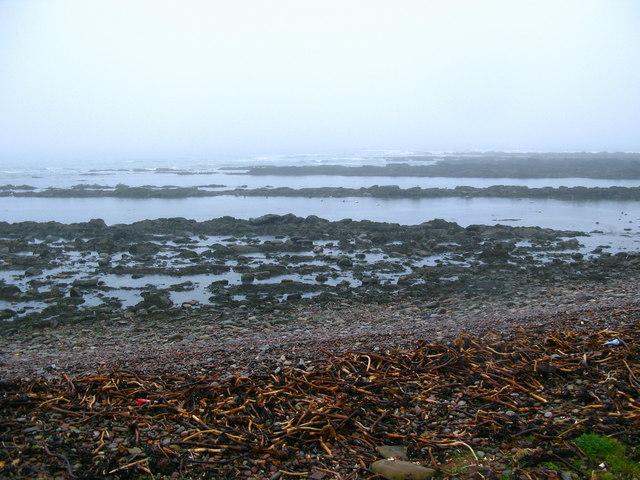 Beach at Cowdrait