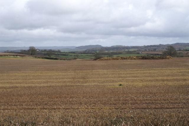 Stanton Wick Field