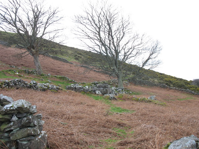 An abandoned hillside encroachment above the village of Gyrn Goch