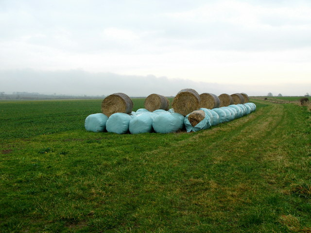 Straw Bales, near Ancroft