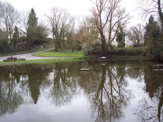 Village Pond, Crawley