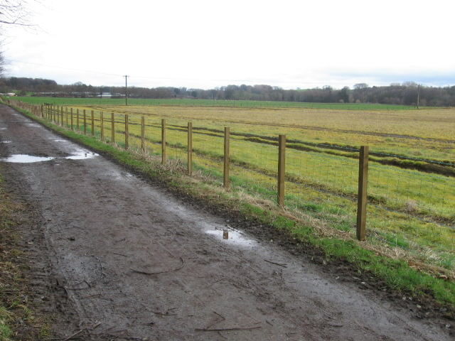 River Ayr Way at Holm Fields