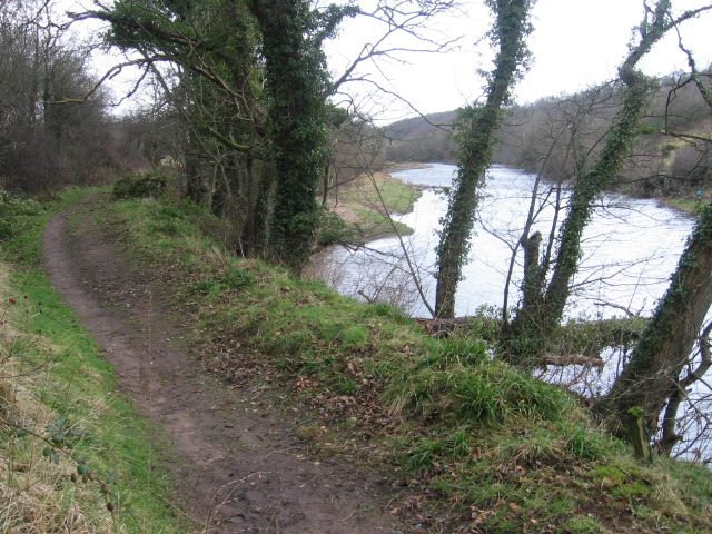 River Ayr Way after Tarholm