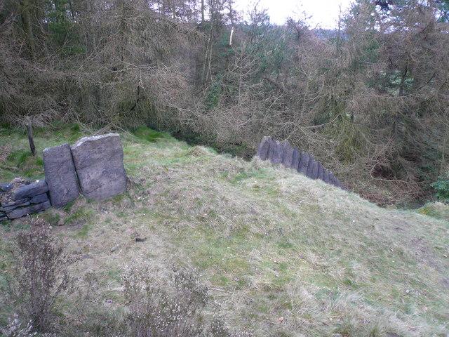 Cocking Tor - Slab Fence