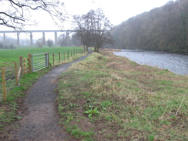 River Ayr Way approaching viaduct near Crawfordston