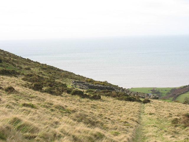 Approaching the sheepfold