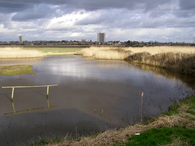 View from birdwatching hide, Lower Test nature reserve