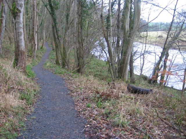 River Ayr Way at Wellflat Bank