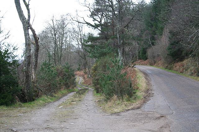 The lane off to the left for Whitetree Farm.