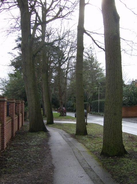 Caversham Heights