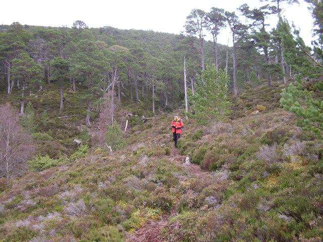 Path to Creag Dubh