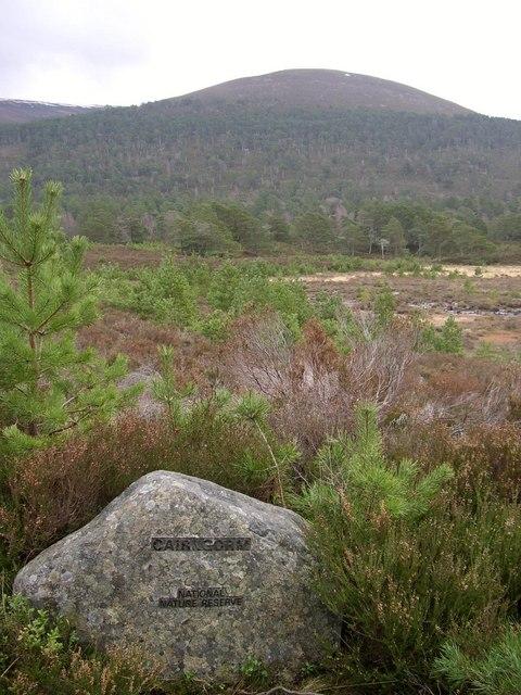 Cairngorm National Nature Reserve