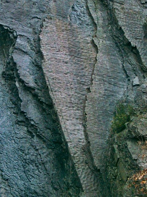 Sediment ripples in roadside quarry