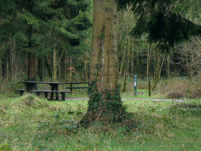 Entrance to Coed Pen Arthur