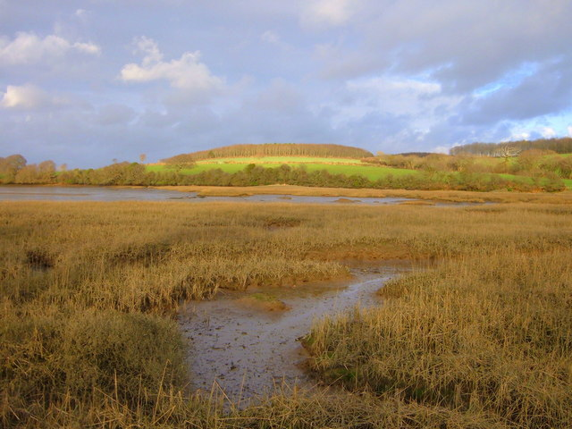 Estuary Head with fields in background
