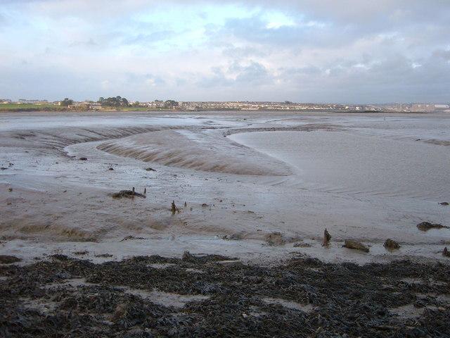 St.John's Lake Mudflats