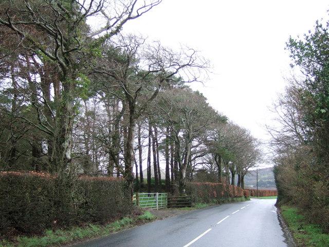 Beacon Down Hill