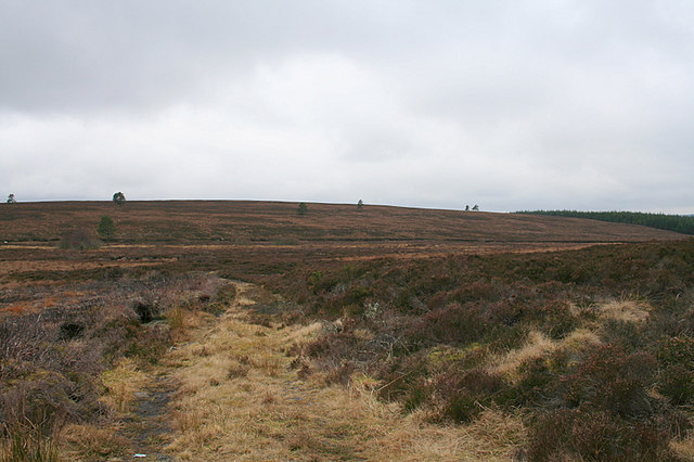 Moorland track to Cairn of Ballindean.