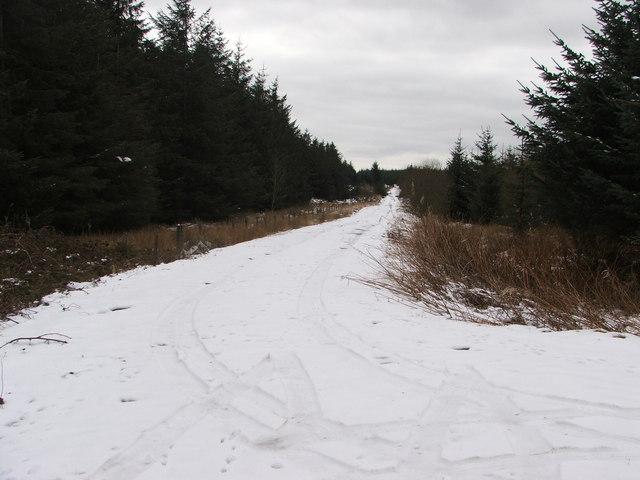 Allt Ddu access track in snow