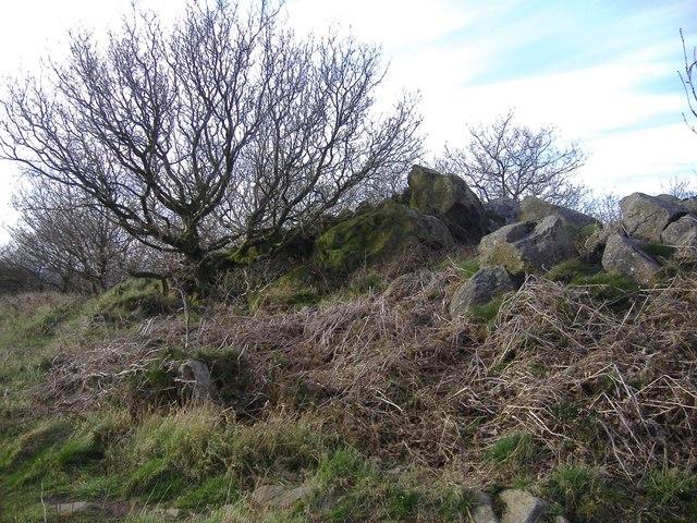 Rock outcrop on Bardon Hill