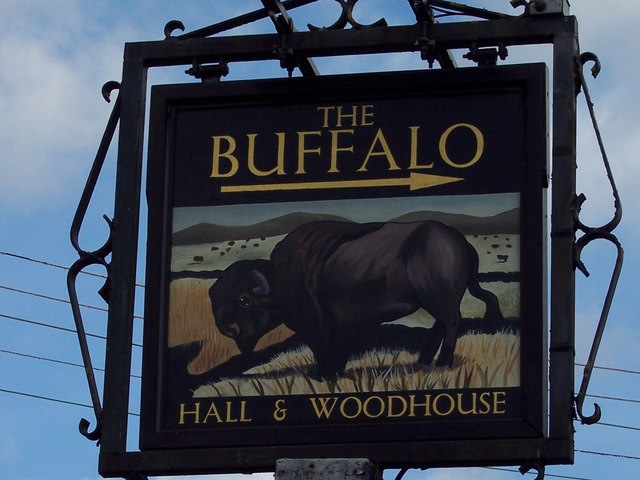 Sign for the Buffalo Public House