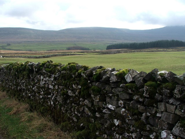 Drystone Wall with Moss at Bruntscar.