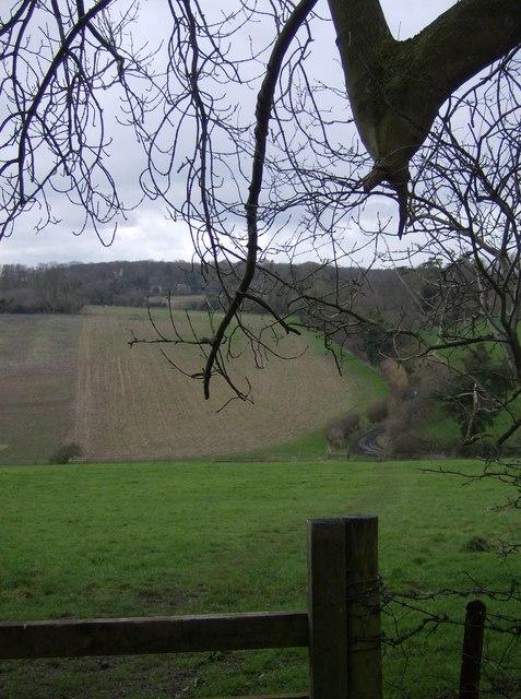 Towards Dyson's Wood