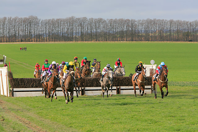 Point-to-point at Badbury Rings