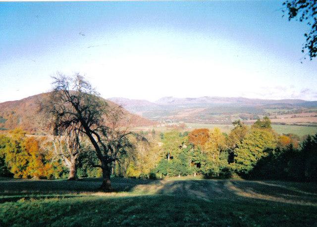 Field at Muirton Mains