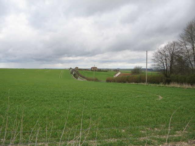 Whiten Hill