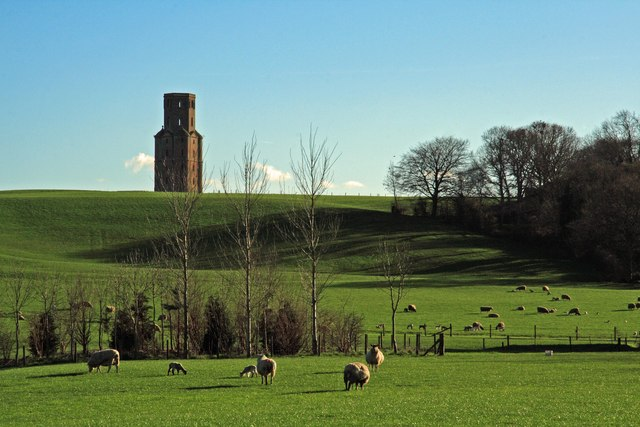 Horton Tower & spring lambs