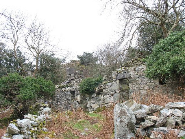 The ruins of Llwyngogau