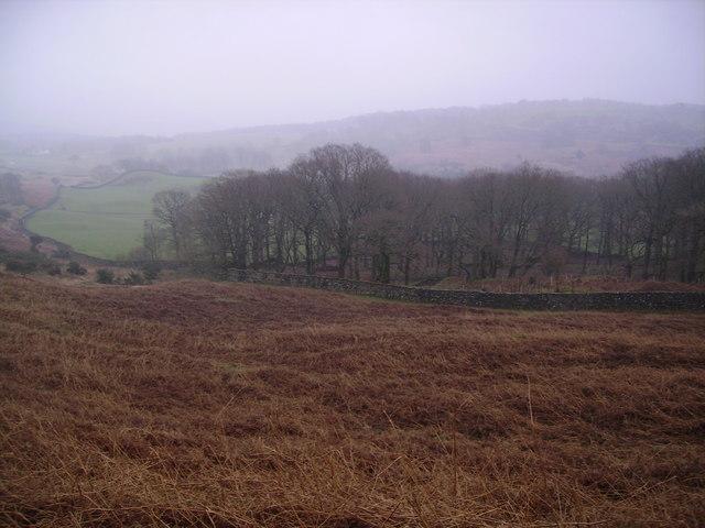 Access Land Low Bethecar Moor