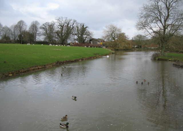 The Mill Pond, Horningsham