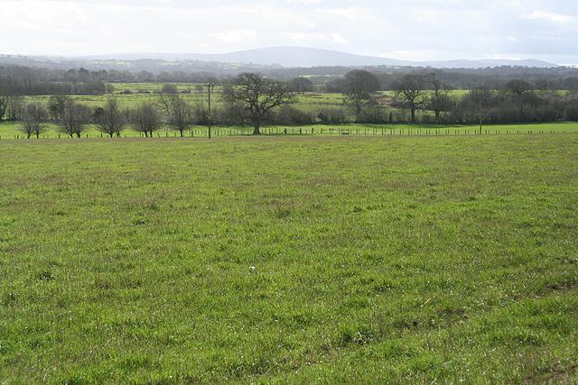 North Tawton: near Broadnymett