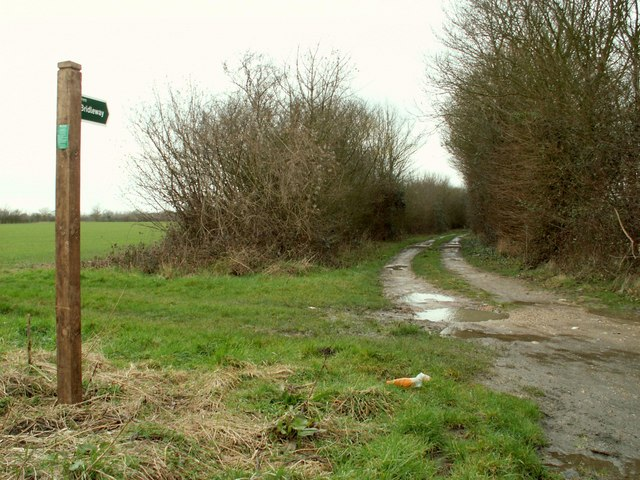 Bridleway, just west of Kenton