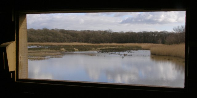 View of Keeping Marsh from the birdwatching hide, Beaulieu Estate