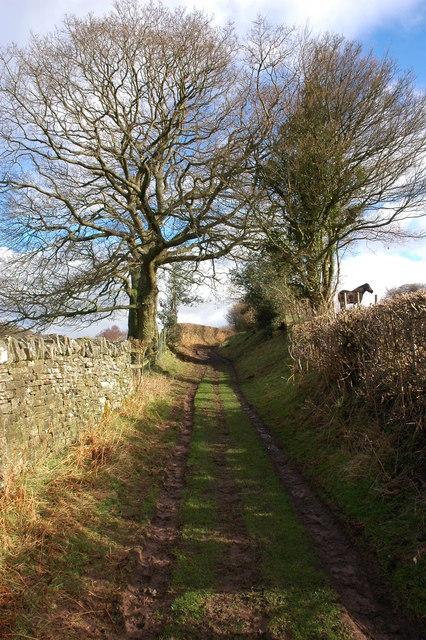 Track to Bryn Arw