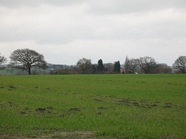 Farmland at Moxby Moor