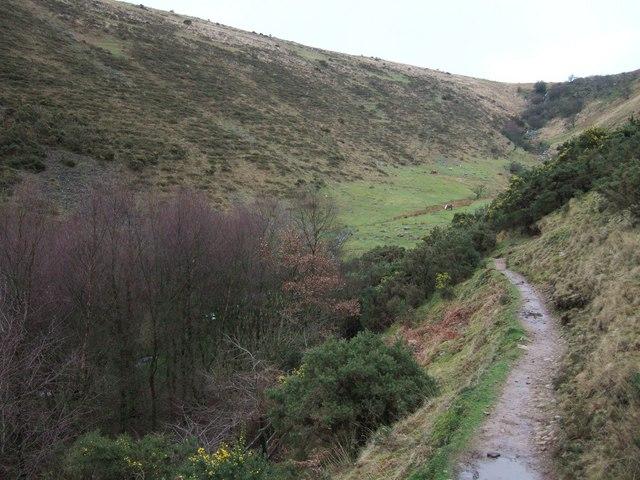 Valley beside Meldon Reservoir