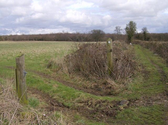 Footpath at Hodmore Farm