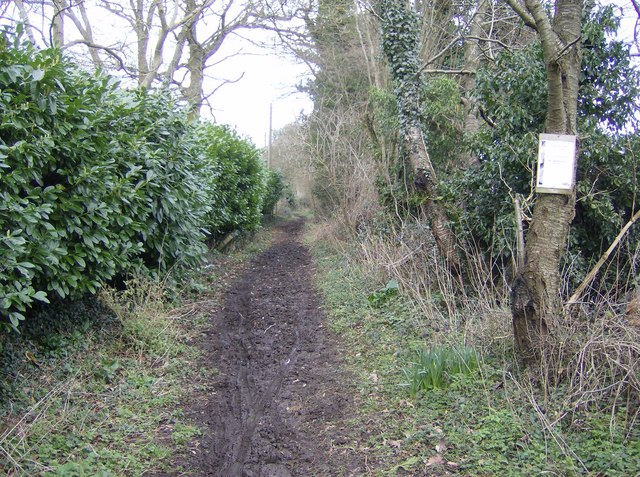 Bridleway at Cross Lanes