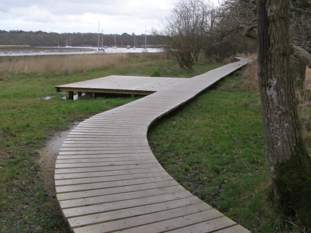Boardwalk on the 'riverside walk', Burnt Oak Copse, Beaulieu Estate