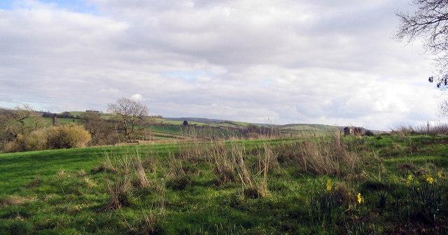Fields near Waytown, looking south east