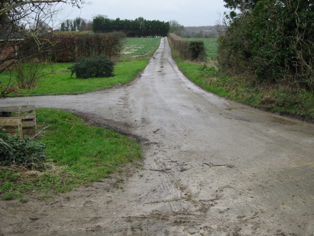 Road to Hill Farm