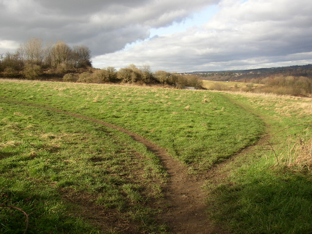 Paths across the field, off Steep Lane, Bradley, Huddersfield