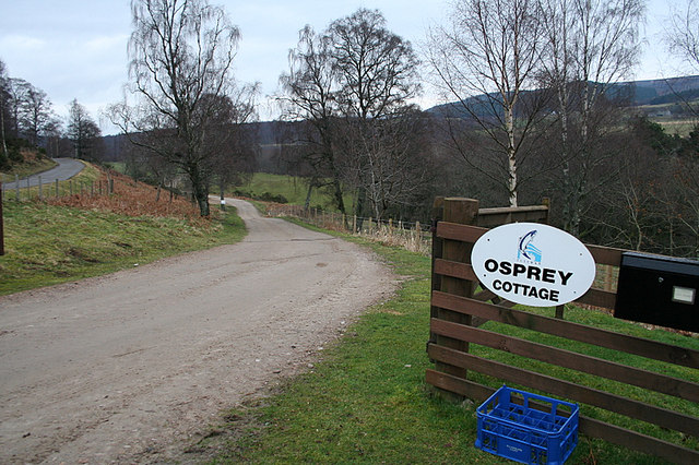 The lane to Osprey Cottage and D beat of Tulchan.