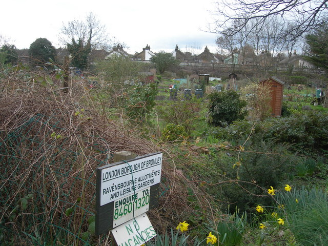 Ravensbourne Allotments